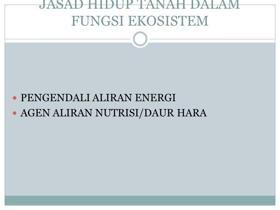 JASAD HIDUP TANAH DALAM FUNGSI EKOSISTEM PENGENDALI ALIRAN ENERGI AGEN ALIRAN NUTRISI/DAUR HARA