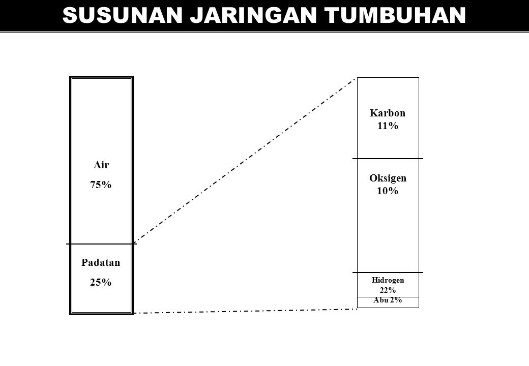 SUSUNAN JARINGAN TUMBUHAN Air 75% Padatan 25% Karbon 11% Oksigen 10% Hidrogen 22% Abu 2%