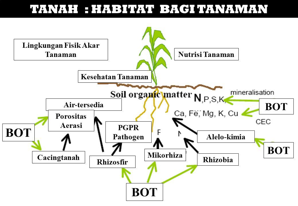 TANAH : HABITAT BAGI TANAMAN Nutrisi Tanaman Lingkungan Fisik Akar Tanaman Kesehatan Tanaman BOT Rhizobia Alelo-kimia Mikorhiza Rhizosfir Cacingtanah
