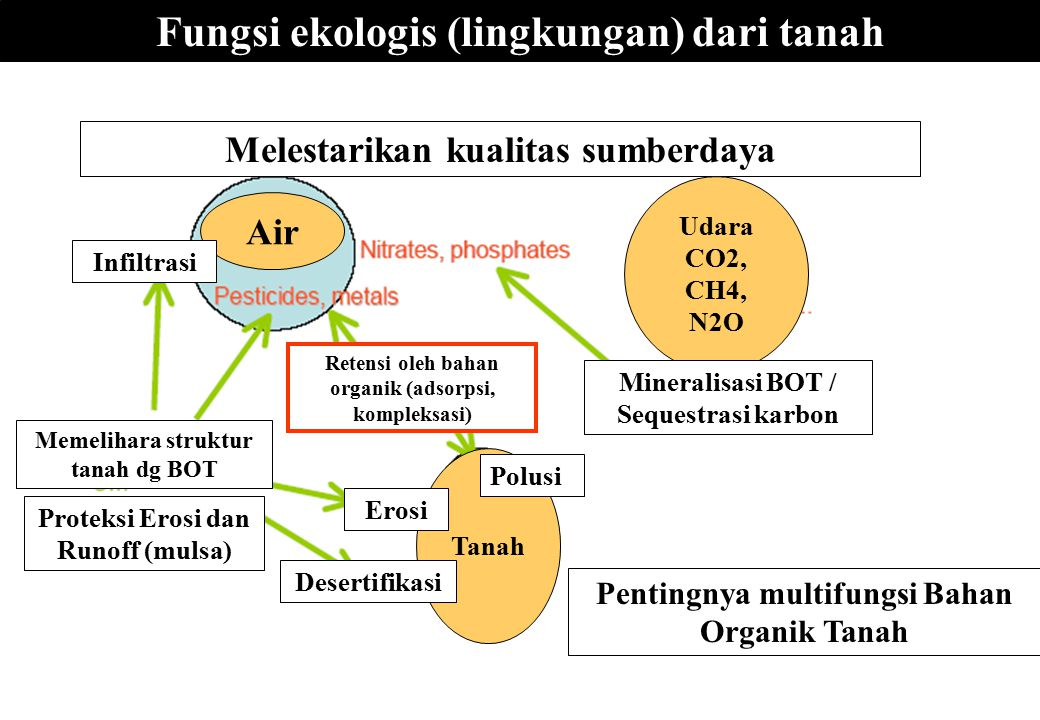 Fungsi ekologis (lingkungan) dari tanah Melestarikan kualitas sumberdaya Pentingnya multifungsi Bahan Organik Tanah Tanah Polusi Erosi Desertifikasi U