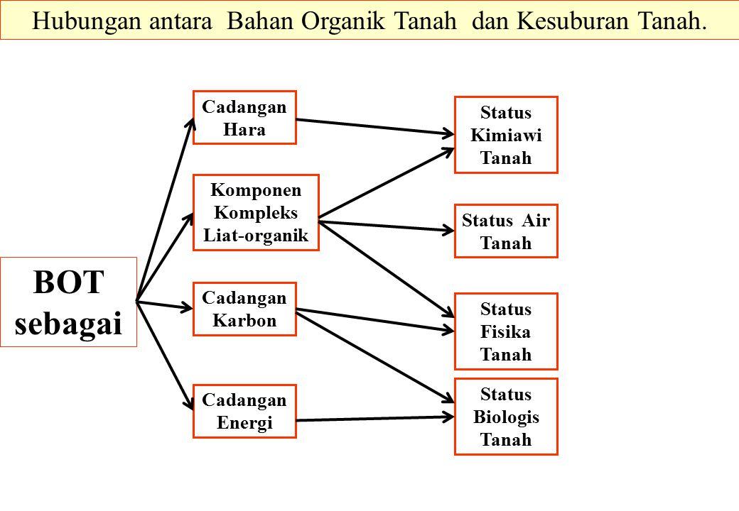 BOT sebagai Status Biologis Tanah Status Fisika Tanah Status Air Tanah Status Kimiawi Tanah Hubungan antara Bahan Organik Tanah dan Kesuburan Tanah. C