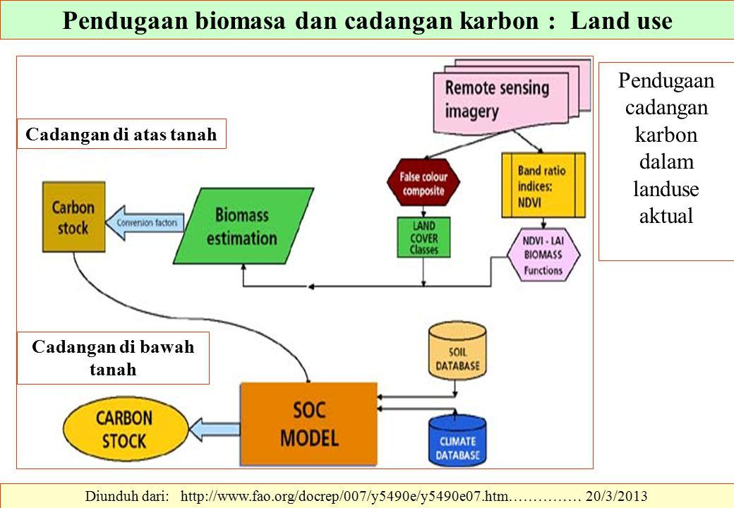 Diunduh dari: http://www.fao.org/docrep/007/y5490e/y5490e07.htm…………… 20/3/2013 Pendugaan cadangan karbon dalam landuse aktual Pendugaan biomasa dan ca