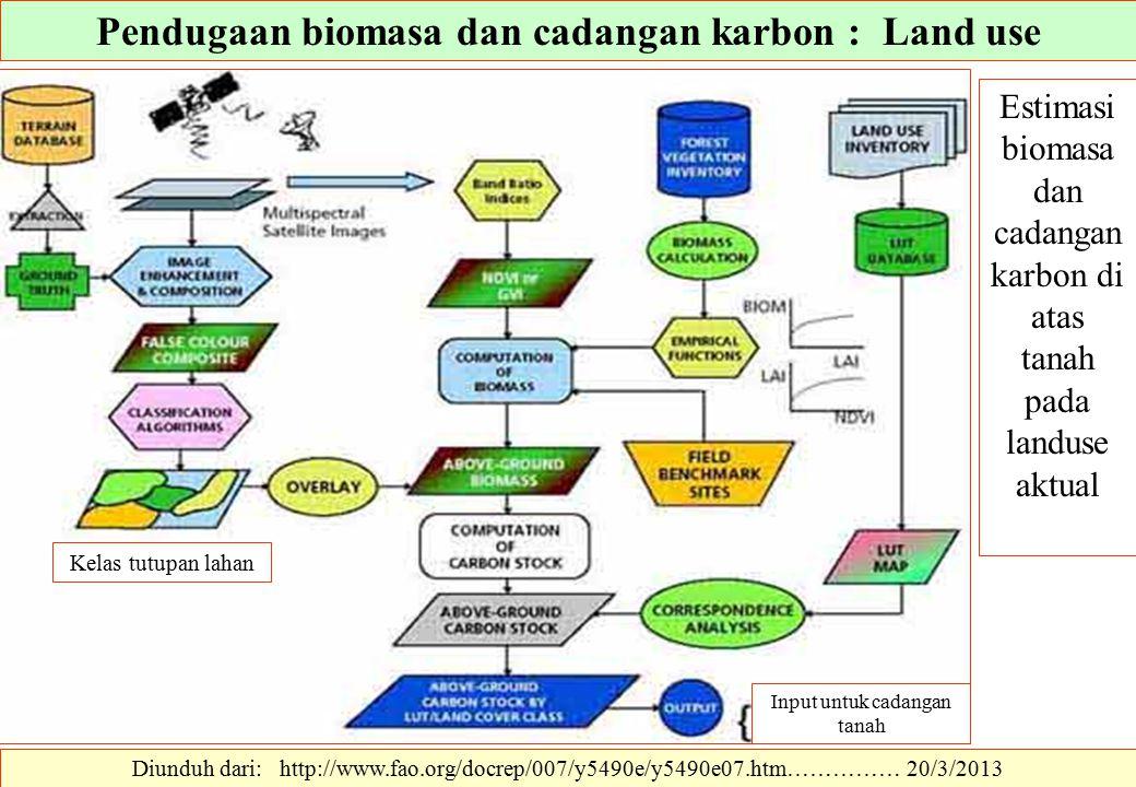 Diunduh dari: http://www.fao.org/docrep/007/y5490e/y5490e07.htm…………… 20/3/2013 Estimasi biomasa dan cadangan karbon di atas tanah pada landuse aktual