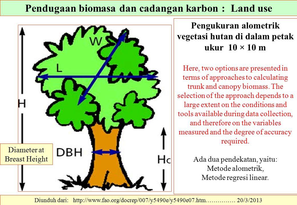 Diunduh dari: http://www.fao.org/docrep/007/y5490e/y5490e07.htm…………… 20/3/2013 Pengukuran alometrik vegetasi hutan di dalam petak ukur 10 × 10 m Here,