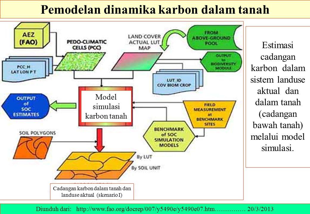 Pemodelan dinamika karbon dalam tanah Estimasi cadangan karbon dalam sistem landuse aktual dan dalam tanah (cadangan bawah tanah) melalui model simula