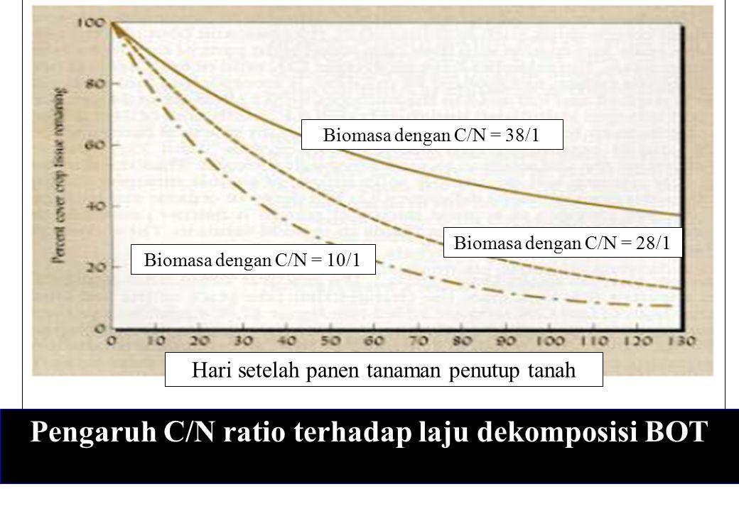 Pengaruh C/N ratio terhadap laju dekomposisi BOT Biomasa dengan C/N = 38/1 Biomasa dengan C/N = 28/1 Biomasa dengan C/N = 10/1 Hari setelah panen tana