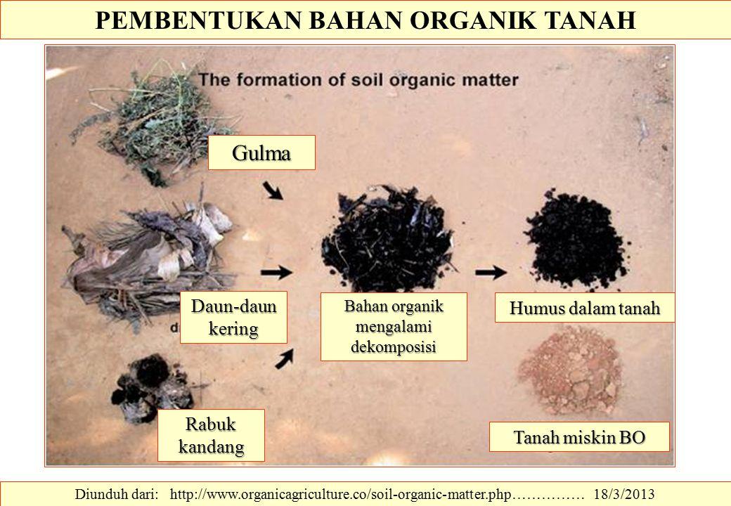 PEMBENTUKAN BAHAN ORGANIK TANAH Diunduh dari: http://www.organicagriculture.co/soil-organic-matter.php…………… 18/3/2013 Gulma Daun-daun kering Rabuk kan