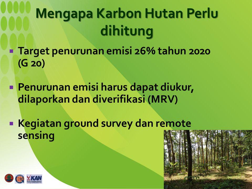  Target penurunan emisi 26% tahun 2020 (G 20)  Penurunan emisi harus dapat diukur, dilaporkan dan diverifikasi (MRV)  Kegiatan ground survey dan re