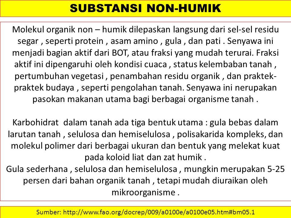 SUBSTANSI NON-HUMIK Molekul organik non – humik dilepaskan langsung dari sel-sel residu segar, seperti protein, asam amino, gula, dan pati.