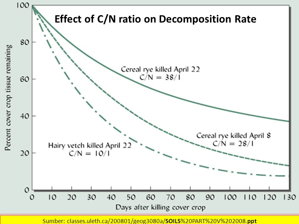 Effect of C/N ratio on Decomposition Rate Sumber: classes.uleth.ca/200801/geog3080a/SOILS%20PART%20V%202008.ppt‎
