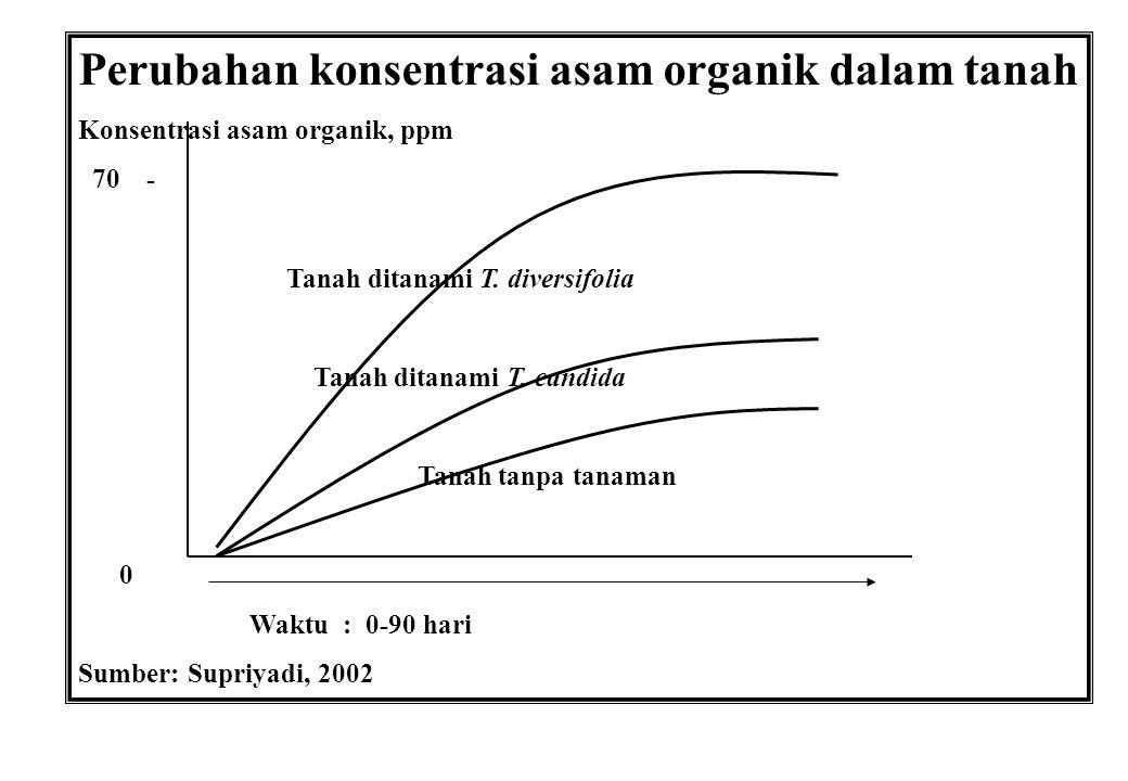 Perubahan konsentrasi asam organik dalam tanah Konsentrasi asam organik, ppm 70 - Tanah ditanami T. diversifolia Tanah ditanami T. candida Tanah tanpa
