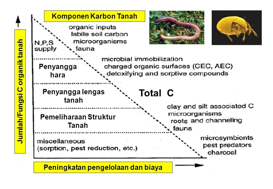 Peningkatan pengelolaan dan biaya Jumlah/Fungsi C organik tanah Komponen Karbon Tanah Pemeliharaan Struktur Tanah Penyangga lengas tanah Penyangga har