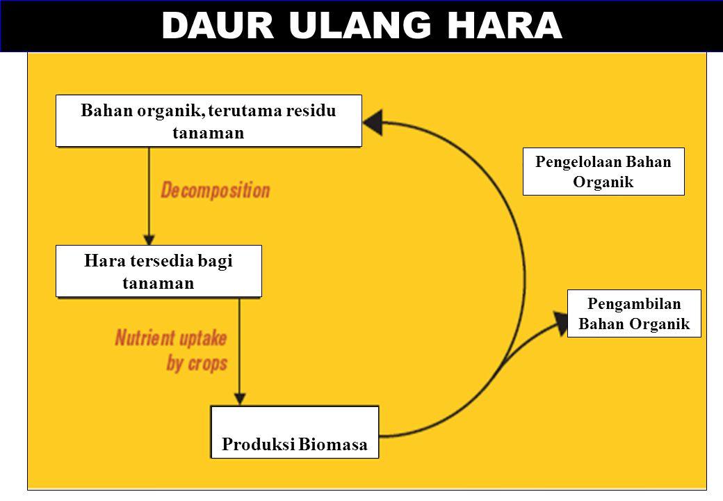 DAUR ULANG HARA Bahan organik, terutama residu tanaman Hara tersedia bagi tanaman Produksi Biomasa Pengambilan Bahan Organik Pengelolaan Bahan Organik