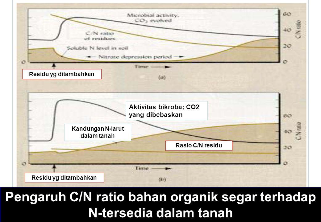 Pengaruh C/N ratio bahan organik segar terhadap N-tersedia dalam tanah Aktivitas bikroba; CO2 yang dibebaskan Kandungan N-larut dalam tanah Rasio C/N