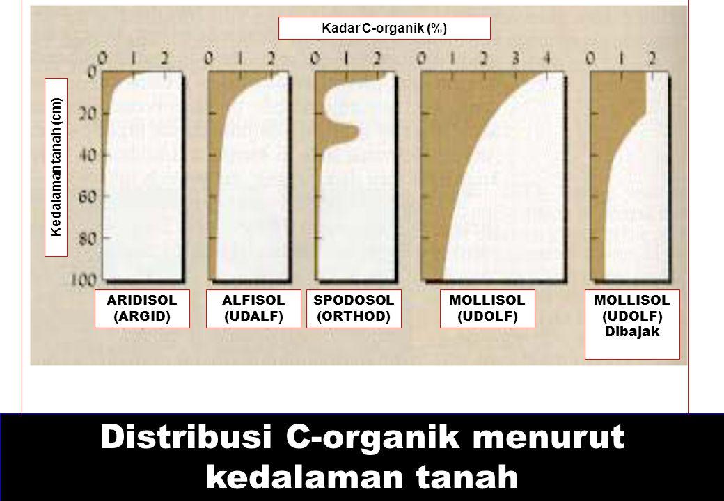 Distribusi C-organik menurut kedalaman tanah Kadar C-organik (%) Kedalaman tanah (cm) ARIDISOL (ARGID) ALFISOL (UDALF) SPODOSOL (ORTHOD) MOLLISOL (UDO