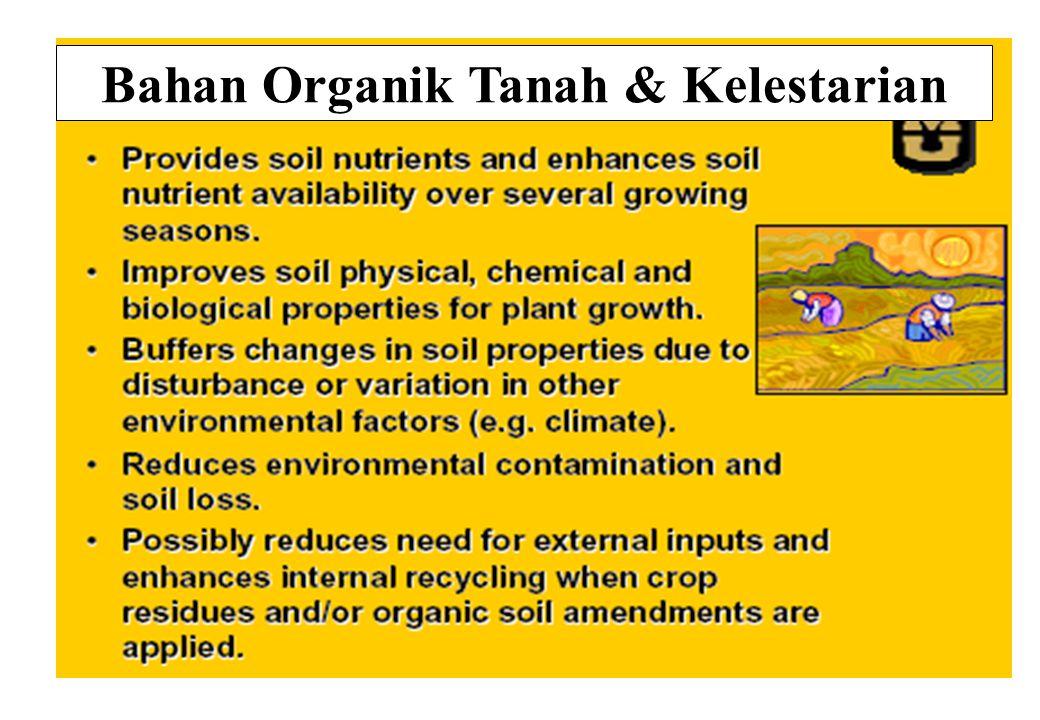 Bahan Organik Tanah & Kelestarian