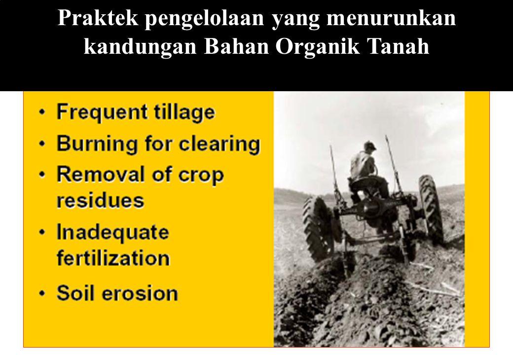 Praktek pengelolaan yang menurunkan kandungan Bahan Organik Tanah