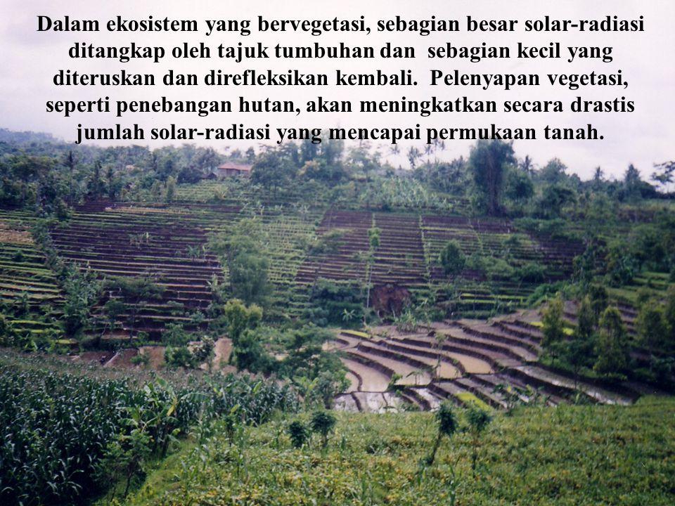 Soemarno, 200760 CROP ROTATION EFFECTS ON SOIL KARAKTERISTIK TANAH Agregasi Tanah Bulk density TATA UDARA KETERSEDIAAN HARA HUBUNGAN TANAH - TANAMAN M