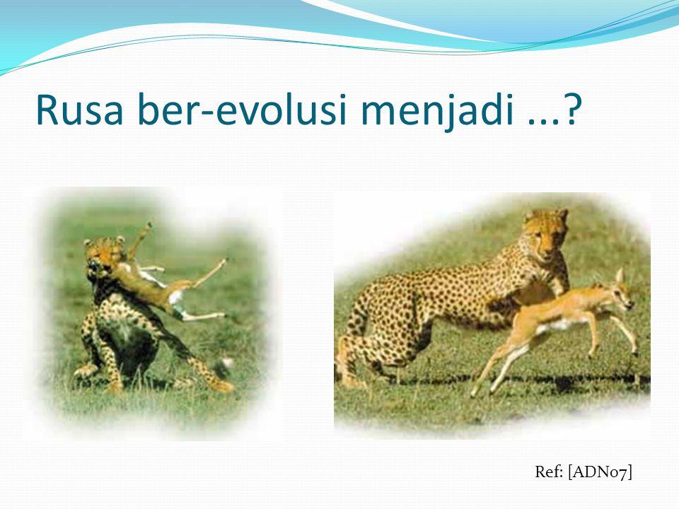 Rusa ber-evolusi menjadi...? Ref: [ADN07]