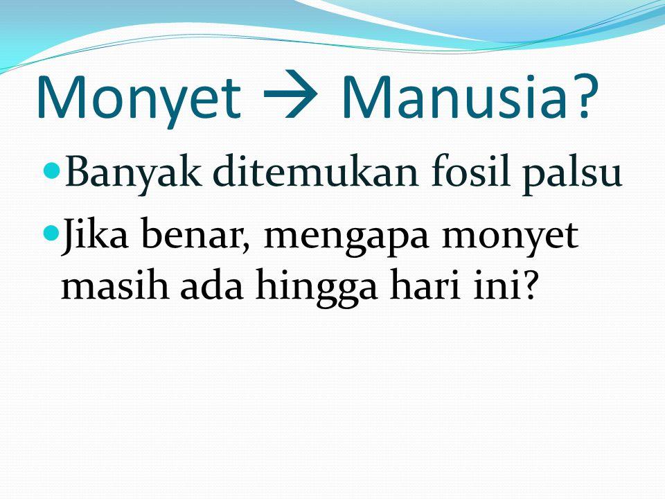Monyet  Manusia? Banyak ditemukan fosil palsu Jika benar, mengapa monyet masih ada hingga hari ini?