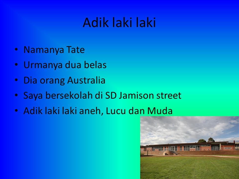 Adik laki laki Namanya Tate Urmanya dua belas Dia orang Australia Saya bersekolah di SD Jamison street Adik laki laki aneh, Lucu dan Muda