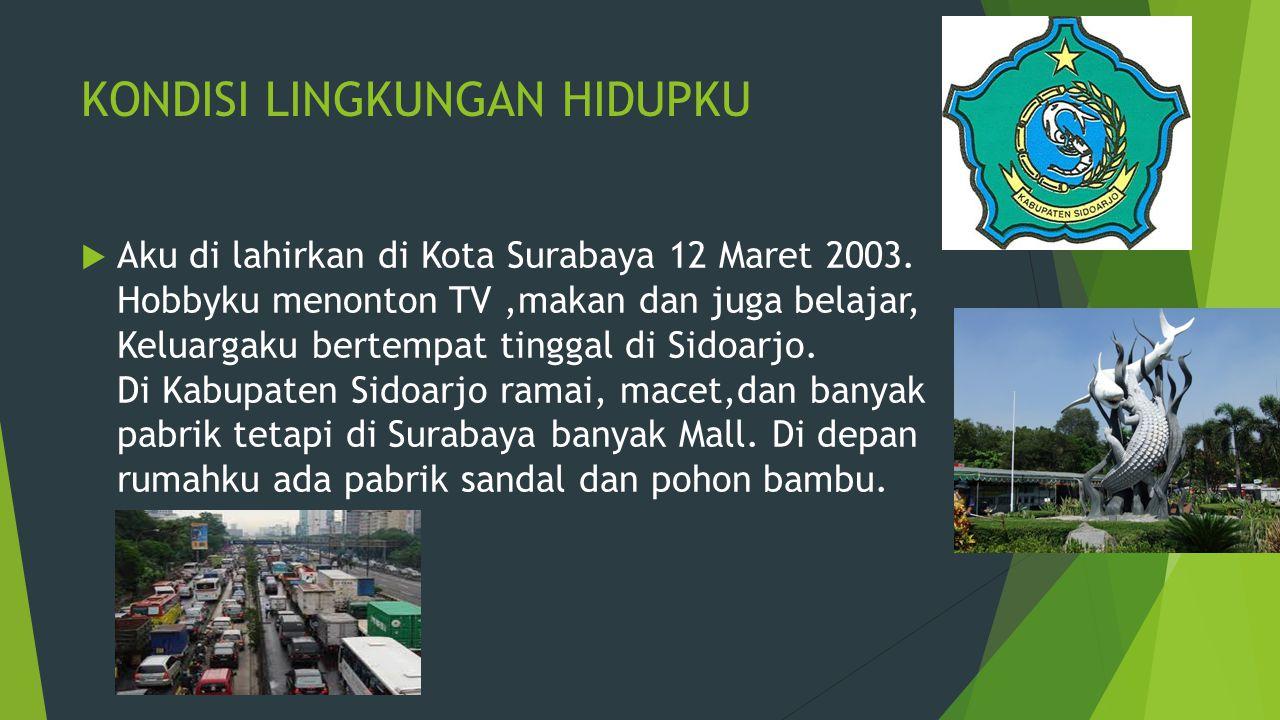 KONDISI LINGKUNGAN HIDUPKU  Aku di lahirkan di Kota Surabaya 12 Maret 2003.