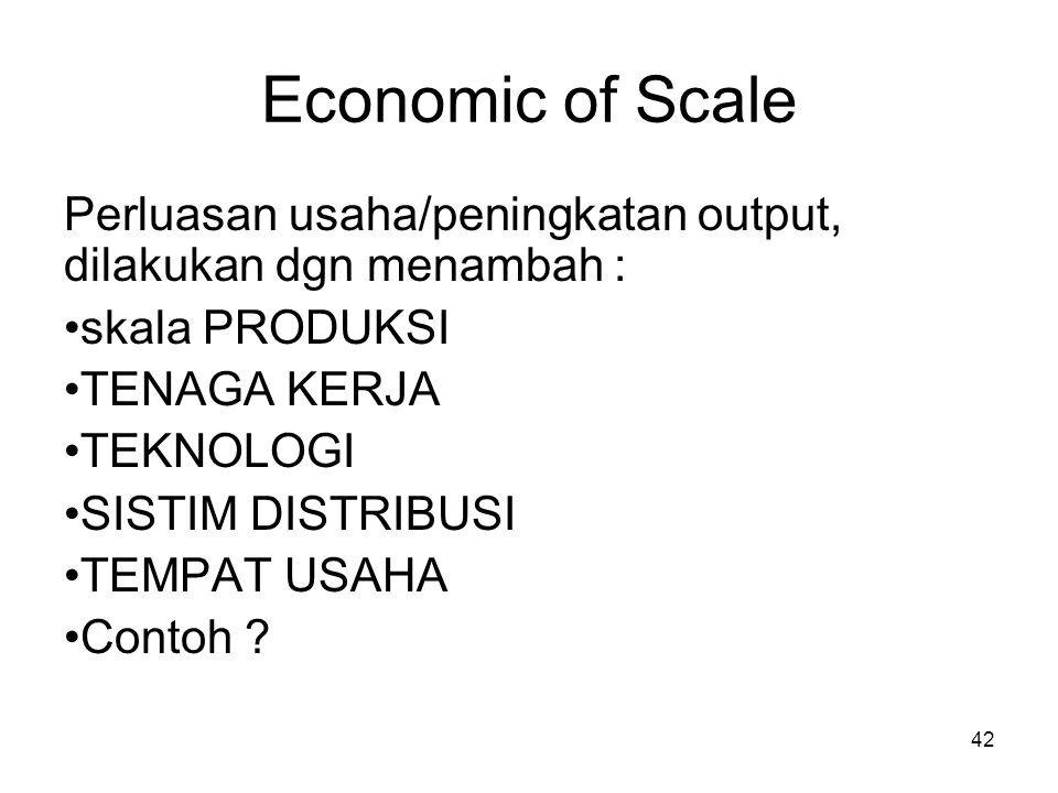 42 Economic of Scale Perluasan usaha/peningkatan output, dilakukan dgn menambah : skala PRODUKSI TENAGA KERJA TEKNOLOGI SISTIM DISTRIBUSI TEMPAT USAHA