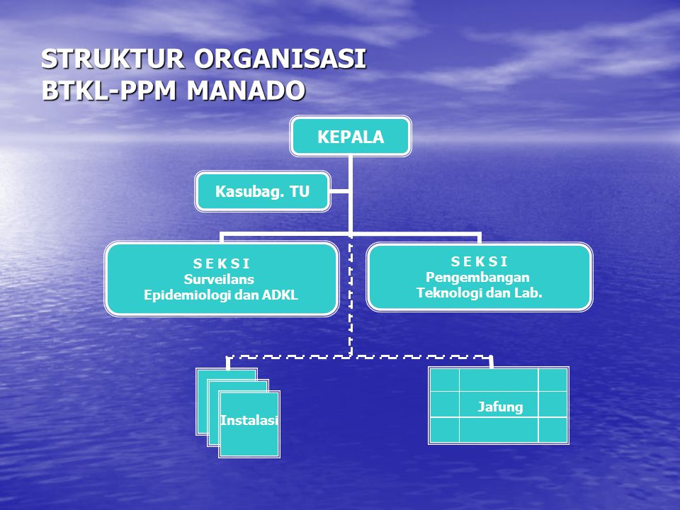 STRUKTUR ORGANISASI BTKL-PPM MANADO Jafung Instalasi