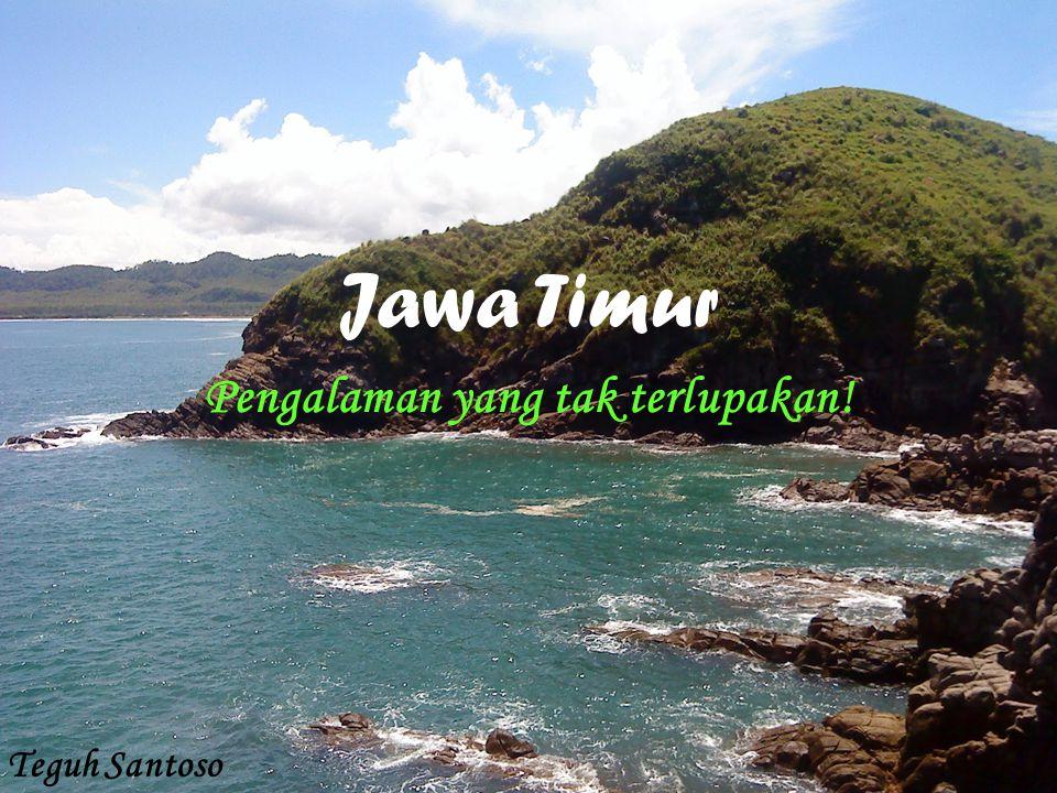 MAKSUD DAN TUJUAN Logo yang mempromosikan Jawa Timur Representasi ikon Jawa Timur Melestarikan Jawa Timur