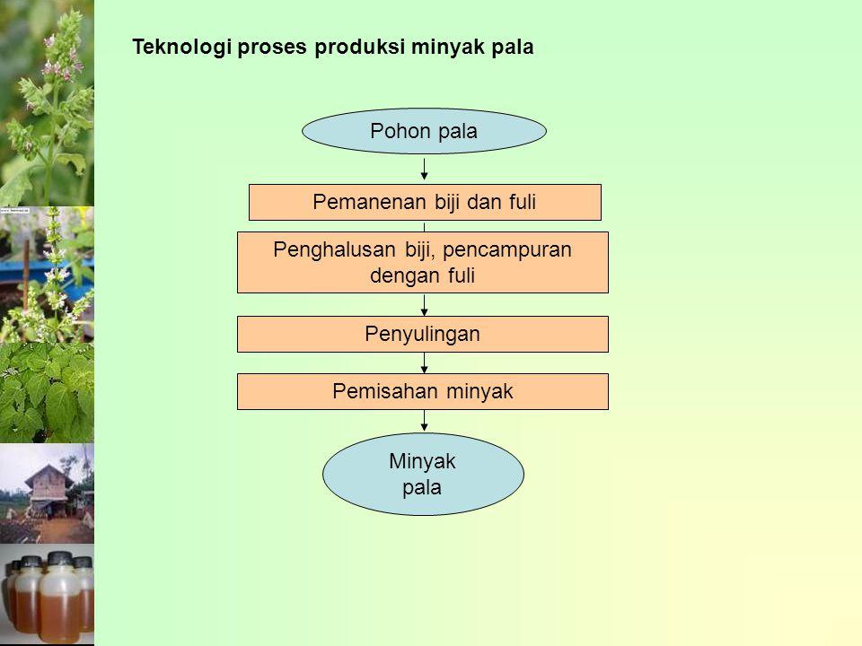 Teknologi proses produksi minyak pala Pohon pala Pemanenan biji dan fuli Penghalusan biji, pencampuran dengan fuli Penyulingan Pemisahan minyak Minyak pala