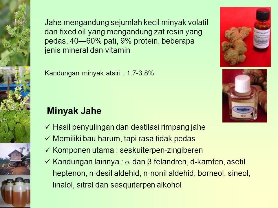 Jahe mengandung sejumlah kecil minyak volatil dan fixed oil yang mengandung zat resin yang pedas, 40—60% pati, 9% protein, beberapa jenis mineral dan vitamin Minyak Jahe Hasil penyulingan dan destilasi rimpang jahe Memiliki bau harum, tapi rasa tidak pedas Komponen utama : seskuiterpen-zingiberen Kandungan lainnya :  dan β felandren, d-kamfen, asetil heptenon, n-desil aldehid, n-nonil aldehid, borneol, sineol, linalol, sitral dan sesquiterpen alkohol Kandungan minyak atsiri : 1.7-3.8%