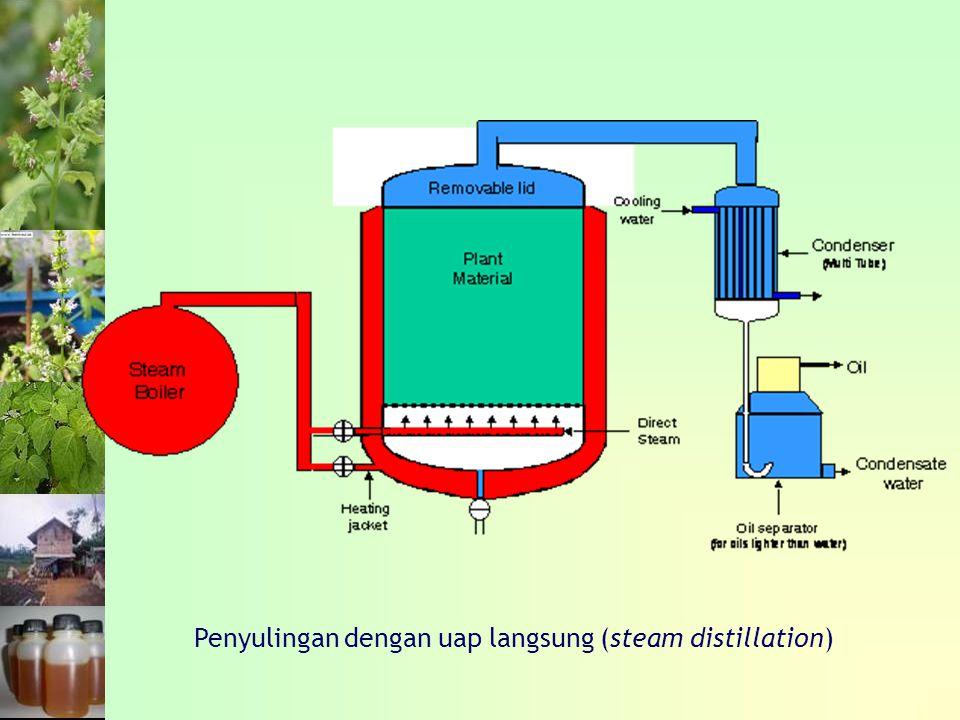 Penyulingan dengan uap langsung (steam distillation)