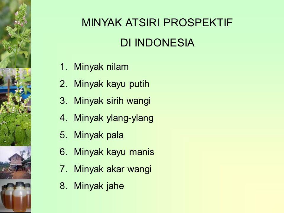 MINYAK ATSIRI PROSPEKTIF DI INDONESIA 1.Minyak nilam 2.Minyak kayu putih 3.Minyak sirih wangi 4.Minyak ylang-ylang 5.Minyak pala 6.Minyak kayu manis 7.Minyak akar wangi 8.Minyak jahe