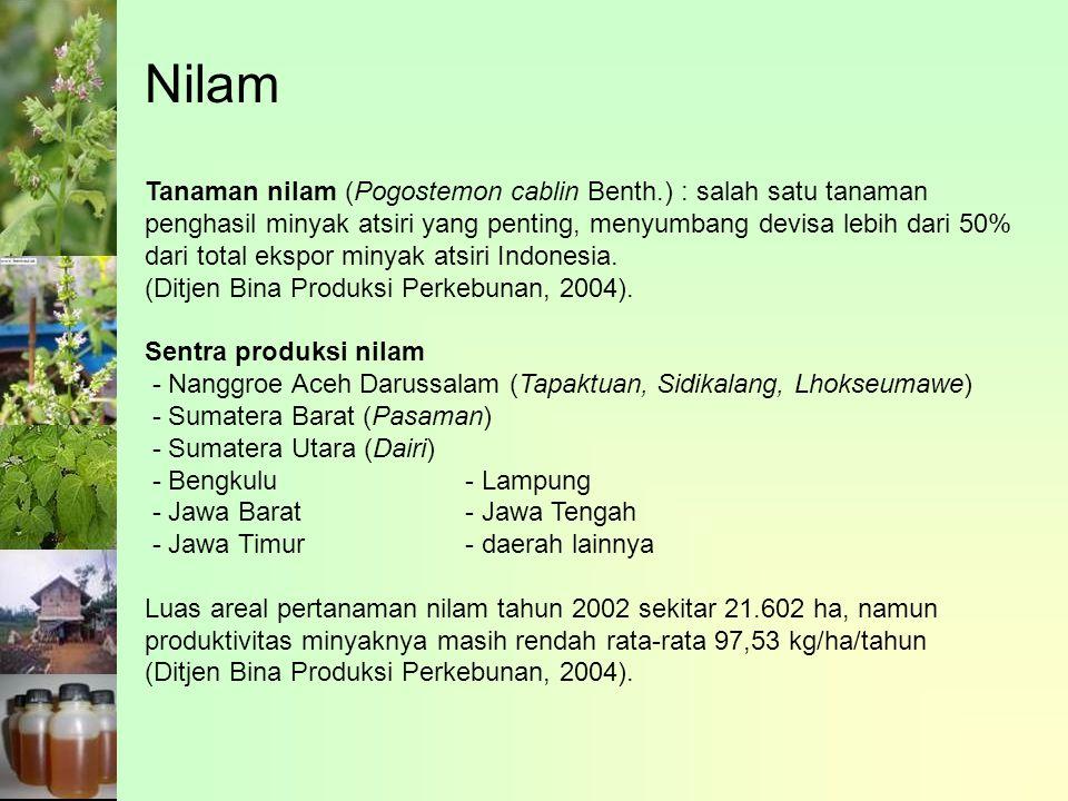 Tanaman nilam (Pogostemon cablin Benth.) : salah satu tanaman penghasil minyak atsiri yang penting, menyumbang devisa lebih dari 50% dari total ekspor