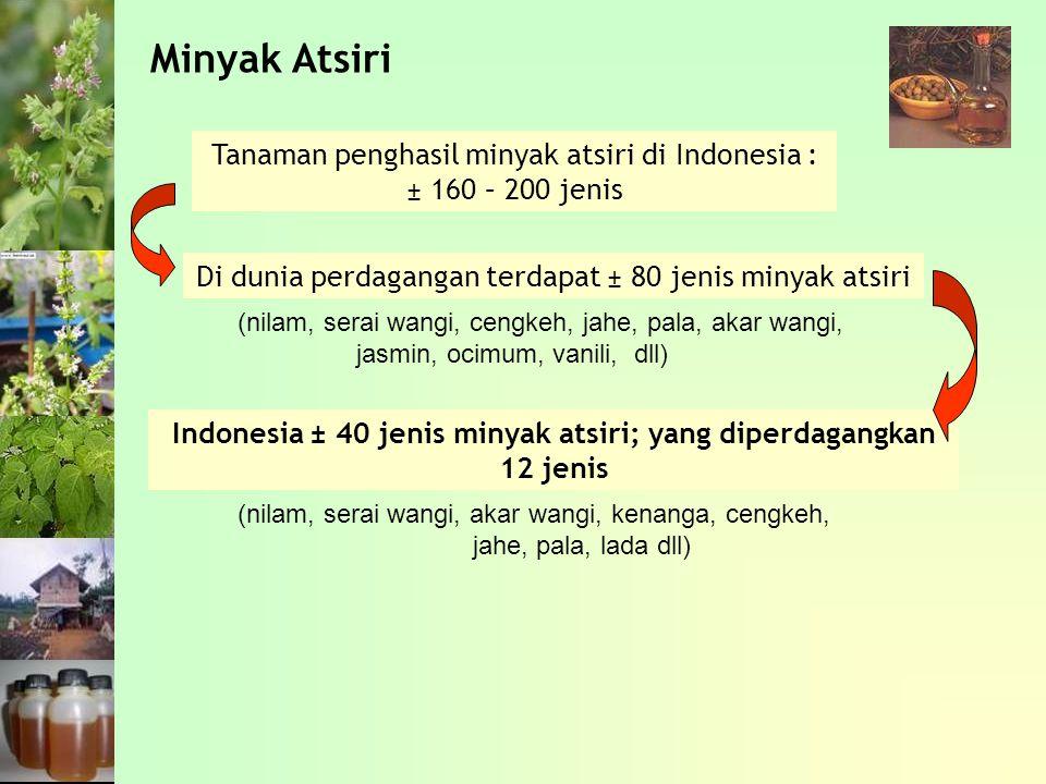 Minyak Atsiri Tanaman penghasil minyak atsiri di Indonesia : ± 160 – 200 jenis Di dunia perdagangan terdapat ± 80 jenis minyak atsiri Indonesia ± 40 jenis minyak atsiri; yang diperdagangkan 12 jenis (nilam, serai wangi, cengkeh, jahe, pala, akar wangi, jasmin, ocimum, vanili, dll) (nilam, serai wangi, akar wangi, kenanga, cengkeh, jahe, pala, lada dll)