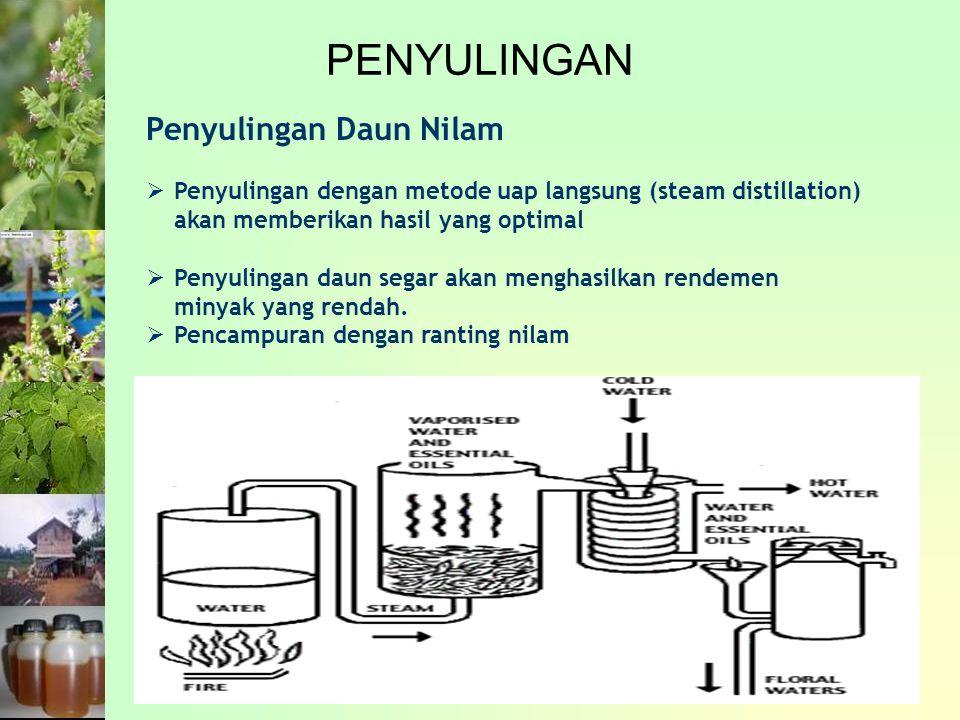 PENYULINGAN Penyulingan Daun Nilam  Penyulingan dengan metode uap langsung (steam distillation) akan memberikan hasil yang optimal  Penyulingan daun segar akan menghasilkan rendemen minyak yang rendah.