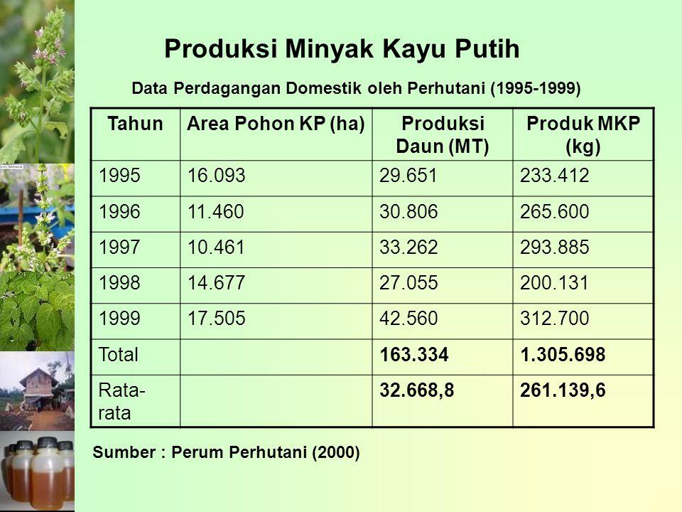 Produksi Minyak Kayu Putih Data Perdagangan Domestik oleh Perhutani (1995-1999) TahunArea Pohon KP (ha)Produksi Daun (MT) Produk MKP (kg) 199516.09329.651233.412 199611.46030.806265.600 199710.46133.262293.885 199814.67727.055200.131 199917.50542.560312.700 Total163.3341.305.698 Rata- rata 32.668,8261.139,6 Sumber : Perum Perhutani (2000)
