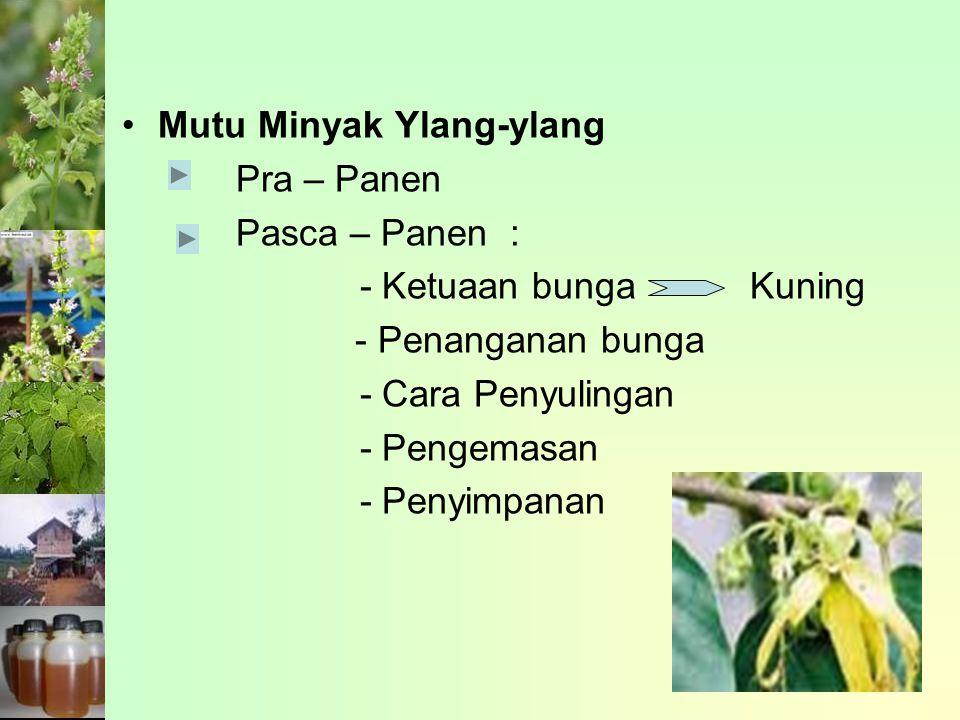 Mutu Minyak Ylang-ylang Pra – Panen Pasca – Panen : - Ketuaan bunga Kuning - Penanganan bunga - Cara Penyulingan - Pengemasan - Penyimpanan