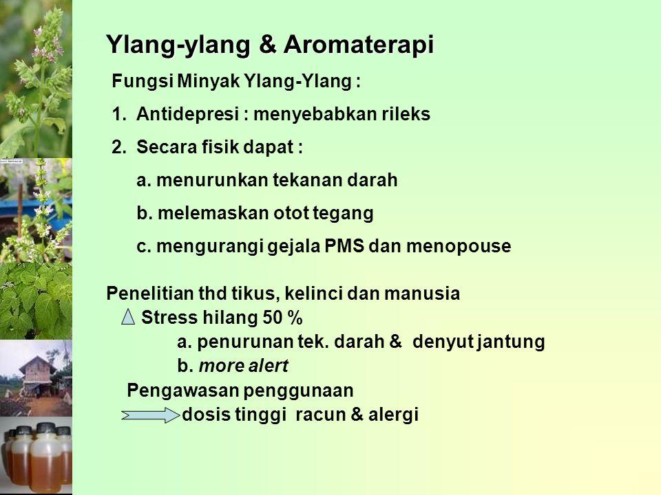 Fungsi Minyak Ylang-Ylang : 1.Antidepresi : menyebabkan rileks 2.Secara fisik dapat : a. menurunkan tekanan darah b. melemaskan otot tegang c. mengura