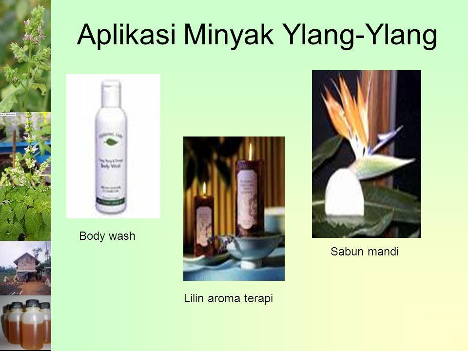 Body wash Lilin aroma terapi Sabun mandi Aplikasi Minyak Ylang-Ylang