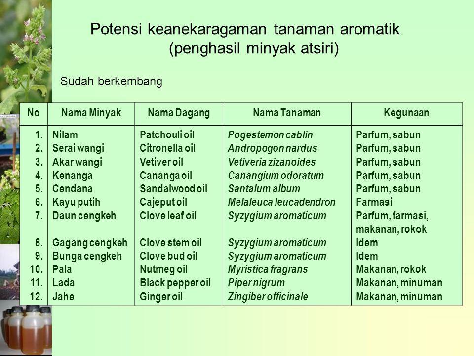 Potensi keanekaragaman tanaman aromatik (penghasil minyak atsiri) NoNama MinyakNama DagangNama TanamanKegunaan 1.