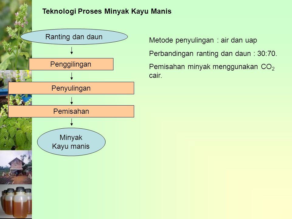 Teknologi Proses Minyak Kayu Manis Ranting dan daun Penggilingan Pemisahan Minyak Kayu manis Penyulingan Metode penyulingan : air dan uap Perbandingan ranting dan daun : 30:70.