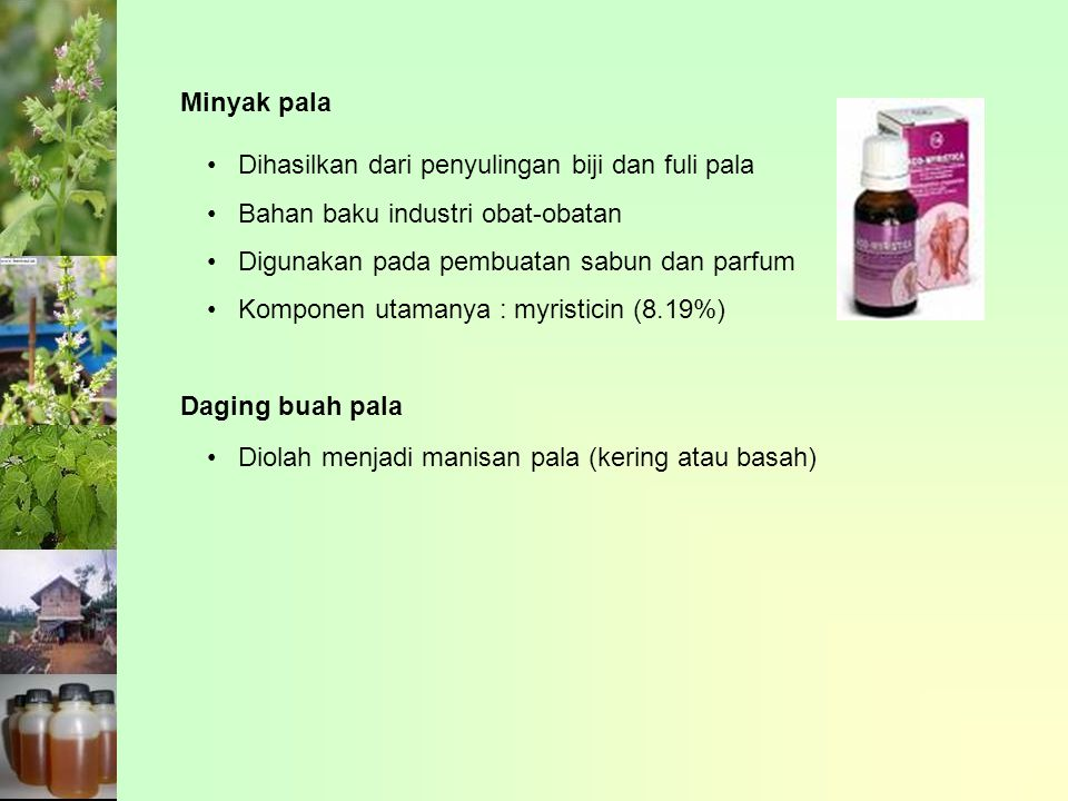 Minyak pala Dihasilkan dari penyulingan biji dan fuli pala Bahan baku industri obat-obatan Digunakan pada pembuatan sabun dan parfum Komponen utamanya