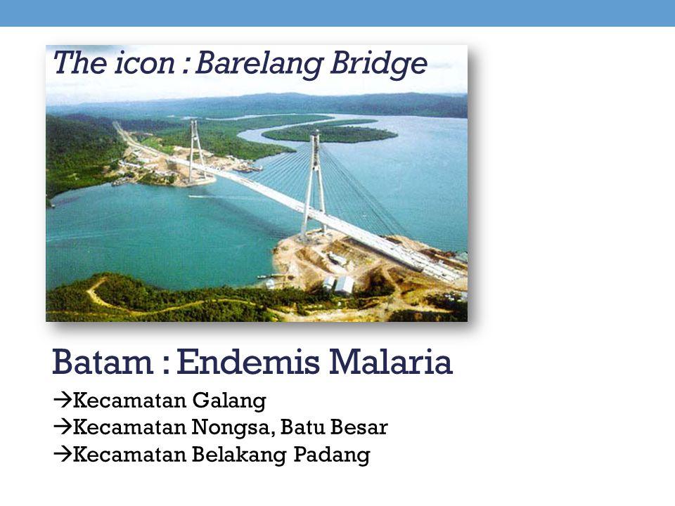 The icon : Barelang Bridge Batam : Endemis Malaria  Kecamatan Galang  Kecamatan Nongsa, Batu Besar  Kecamatan Belakang Padang