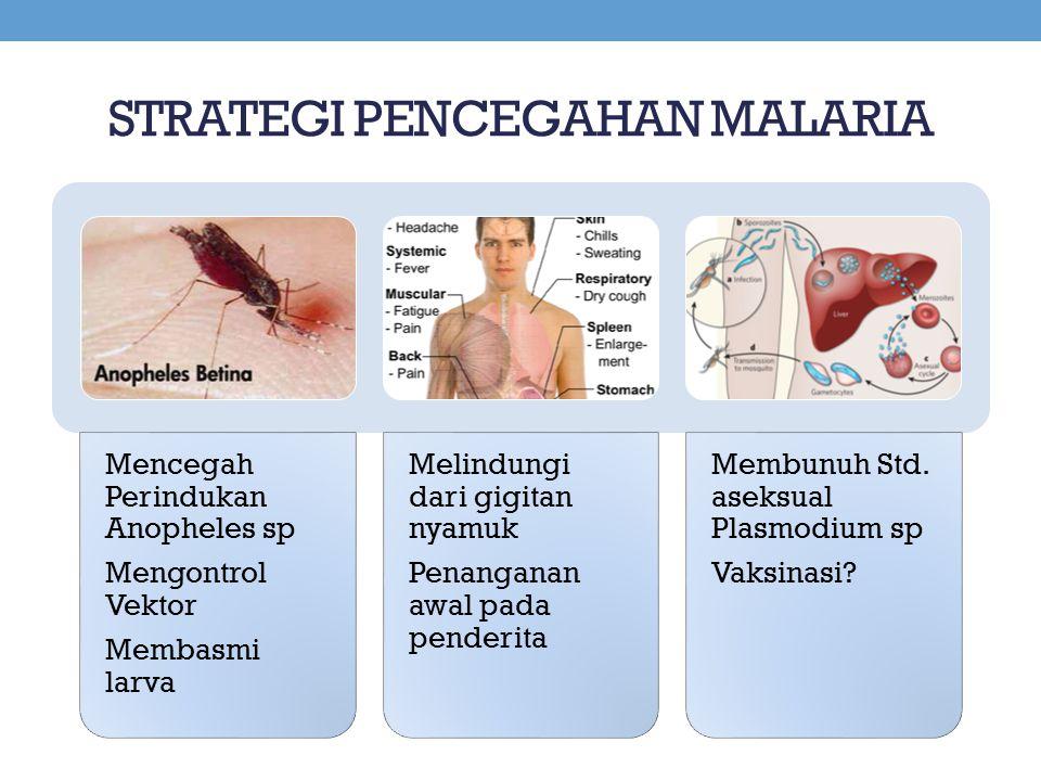 STRATEGI PENCEGAHAN MALARIA Mencegah Perindukan Anopheles sp Mengontrol Vektor Membasmi larva Melindungi dari gigitan nyamuk Penanganan awal pada pend
