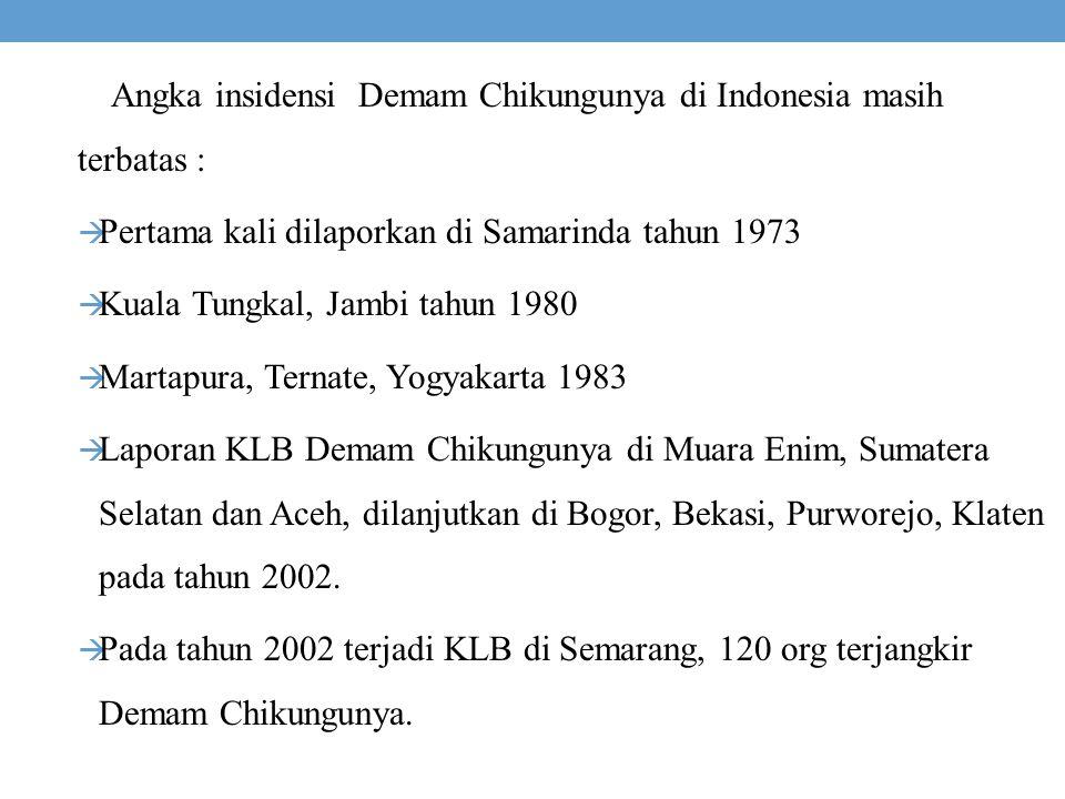 Angka insidensi Demam Chikungunya di Indonesia masih terbatas :  Pertama kali dilaporkan di Samarinda tahun 1973  Kuala Tungkal, Jambi tahun 1980 