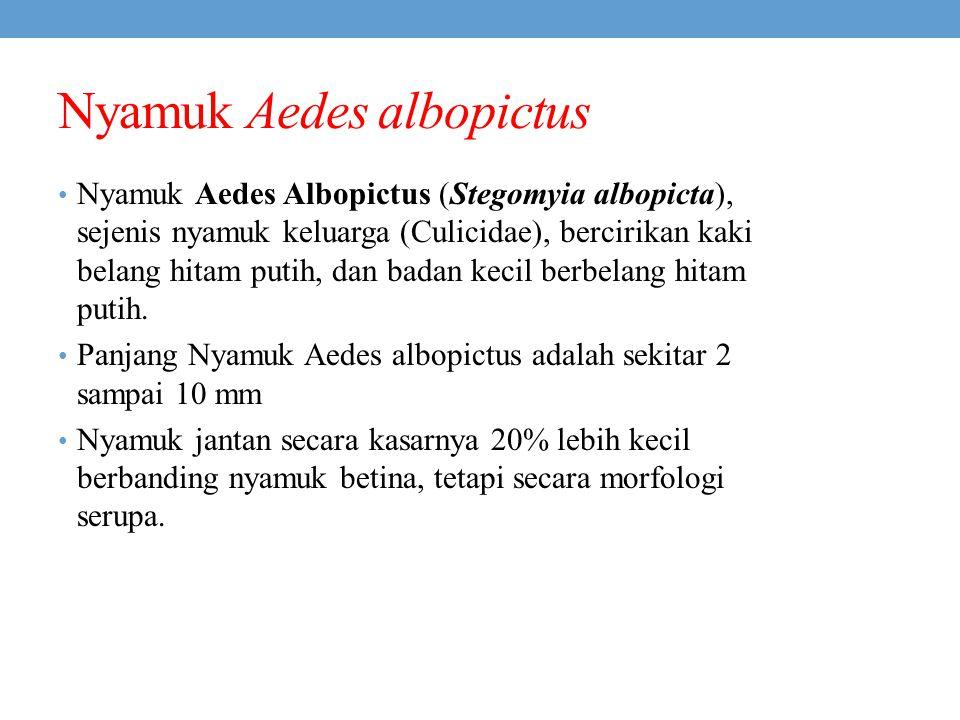 Nyamuk Aedes albopictus Nyamuk Aedes Albopictus (Stegomyia albopicta), sejenis nyamuk keluarga (Culicidae), bercirikan kaki belang hitam putih, dan ba