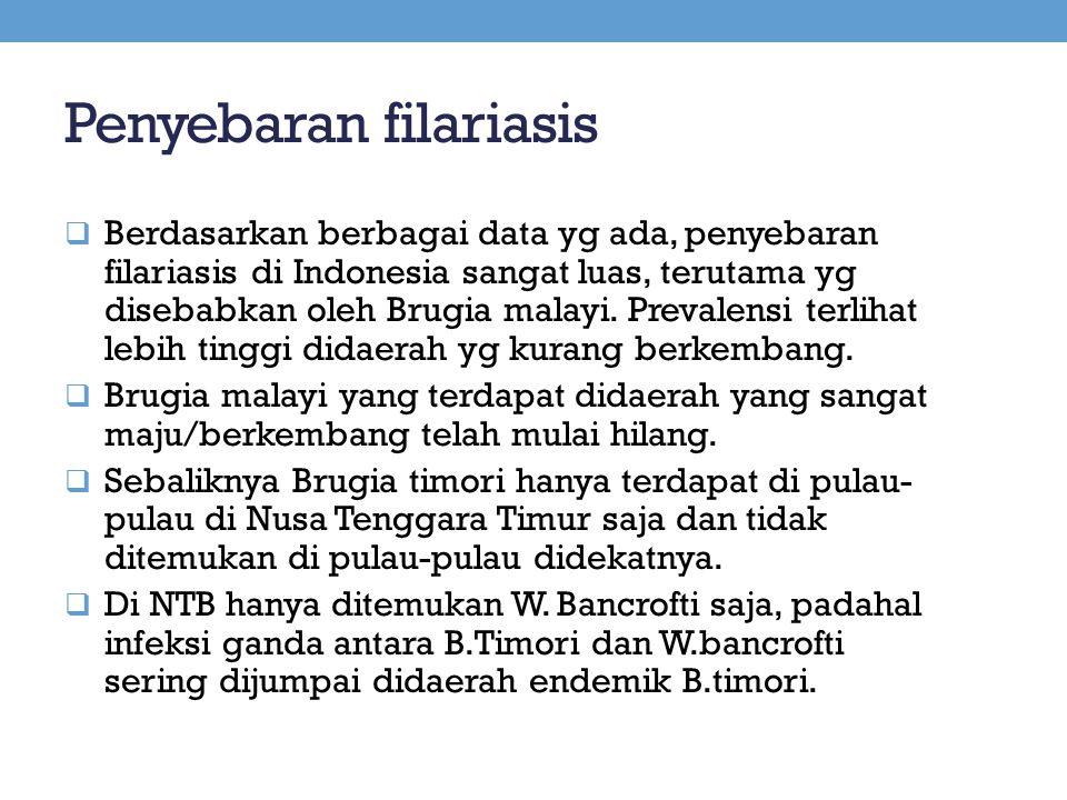 Penyebaran filariasis  Berdasarkan berbagai data yg ada, penyebaran filariasis di Indonesia sangat luas, terutama yg disebabkan oleh Brugia malayi. P