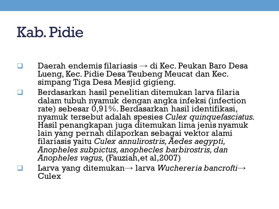 Kab. Pidie  Daerah endemis filariasis → di Kec. Peukan Baro Desa Lueng, Kec. Pidie Desa Teubeng Meucat dan Kec. simpang Tiga Desa Mesjid gigieng.  B