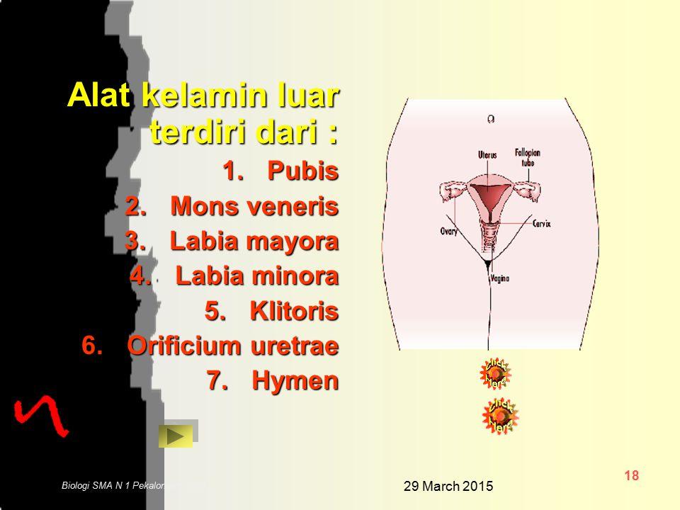 29 March 2015 17 Biologi SMA N 1 Pekalongan 2006 ALAT KELAMIN WANITA Alat kelamin wanita terdiri dari alat kelamin dalam dan alat kelamin luar Alat ke
